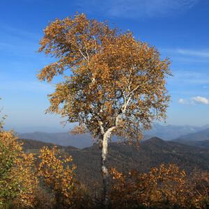 Встречаем осень в горах. День 1-й