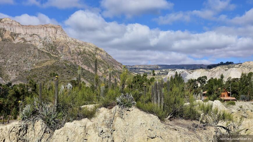 3NO_4020_Valley de la Luna, Лунная долина.JPG