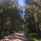 Парк «Балатово»