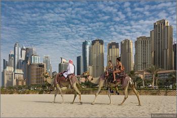В ОАЭ до конца года введут систему Tax Free