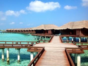 Отель на Мальдивах не отпускает домой туристов «Натали Турс»