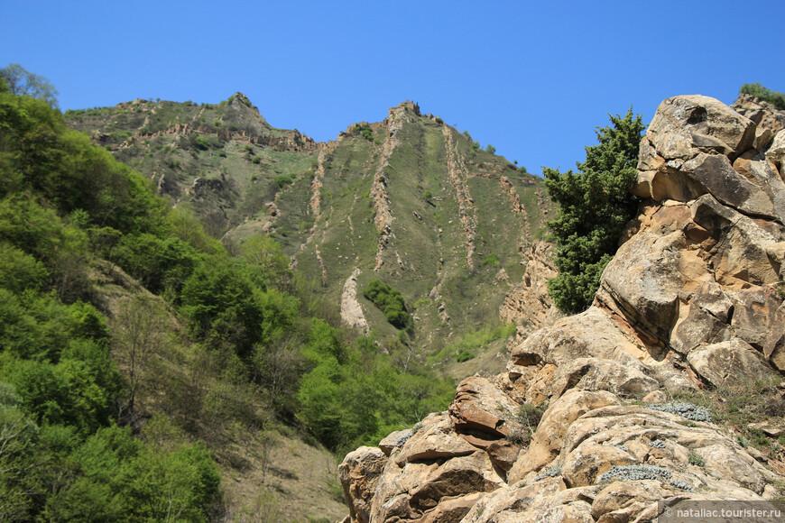 Скала закончилась, я подняла голову и обомлела-на вершине скалы, парящий в небесах, за нами наблюдал Гамсутль!