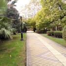 Парк «Поцелуевский сквер»
