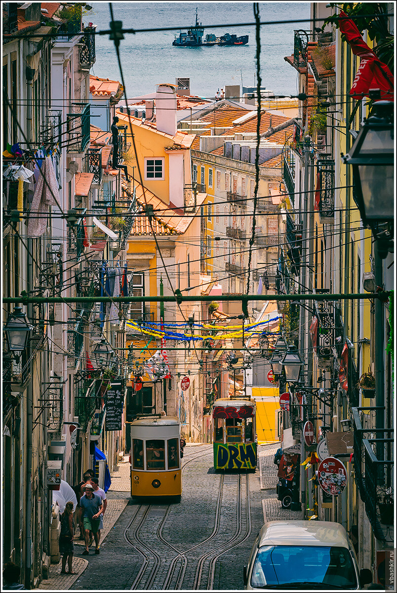 Трамваи. Лиссабон., Я и лаг у троп. Португалия! (палиндром)