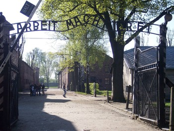 Венгерские туристы пытались украсть камни из концлагеря Освенцим