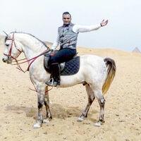 Амон Мохамед (mohamedamon)