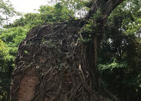 Фото Ангкора от наших гостей