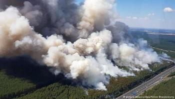 В Германии возникли лесные пожары