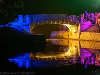 Под Петербургом пройдет фестиваль Ночь света