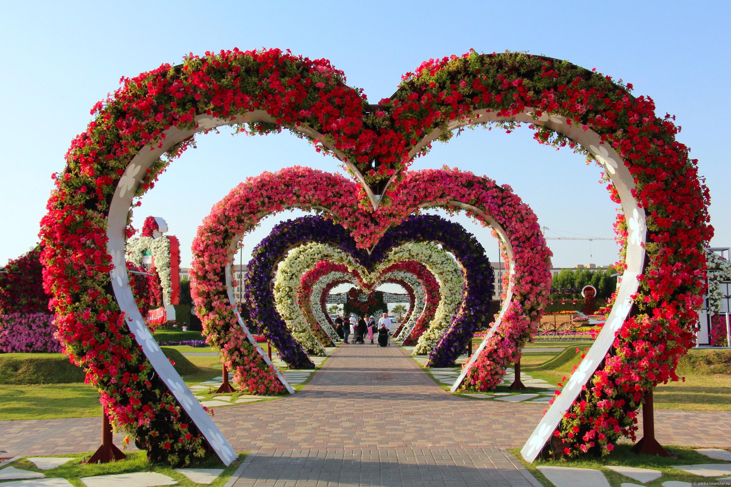 Дубай сад чудес фото освящение квартиры в оаэ