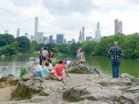 Central Park зеленая жемчужина Нью-Йорка