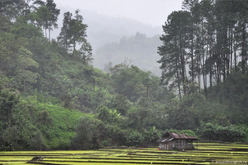Данное мега-живописное место находится в дальнем закутке, среди гор, почти у границы с Бирмой. Тут прохладно, а вокруг ходит то дождь, то туман.