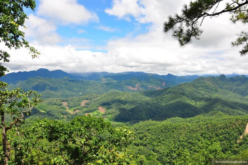 """На второй половине """"кольца"""" от города Ме Хонг Сон до города Пай уже встречаются горы выше, виды масштабнее... и ёлочки."""