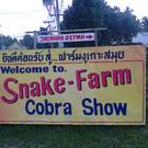 Змеиная ферма
