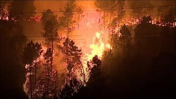 Португальский курорт Алгарви страдает от пожаров