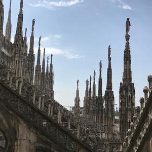 Знакомство с обитателями террас Собора Милана