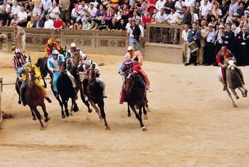 В Сиене пройдёт традиционное конное состязание Палио