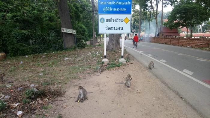Санук-сабай  отпуск в Таиланде. Часть 1, отзыв от туриста raineeva на  Туристер.Ру 273695dea65