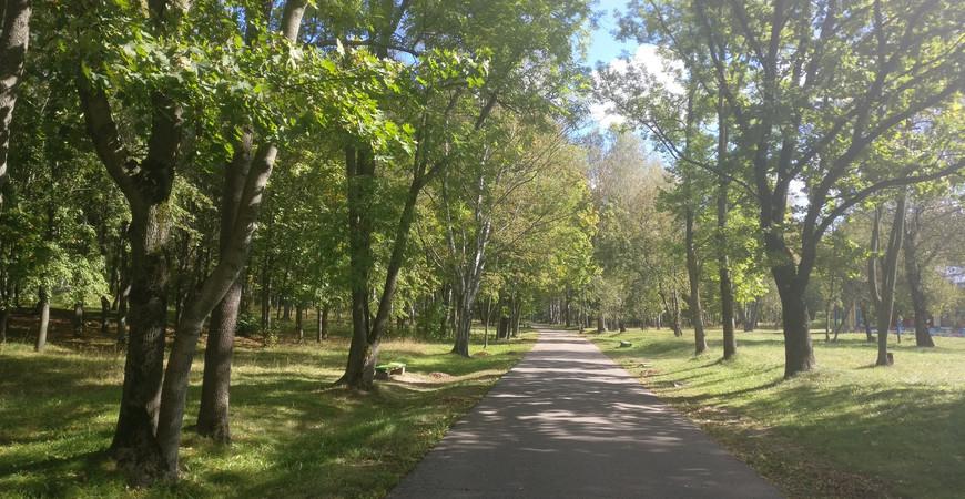 Парк «Мазурино» в Витебске