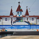 «Страна Дельфиния» в Севастополе