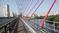 Ванты моста