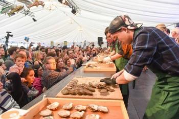 Ирландия приглашает на Фестиваль устриц