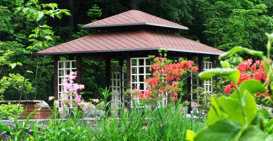 Ботанический сад Владивостока (Ботанический сад-институт ДВО РАН)