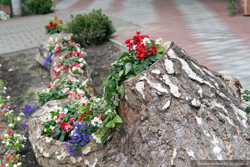 Светлогорск очень зеленый и цветущий город.