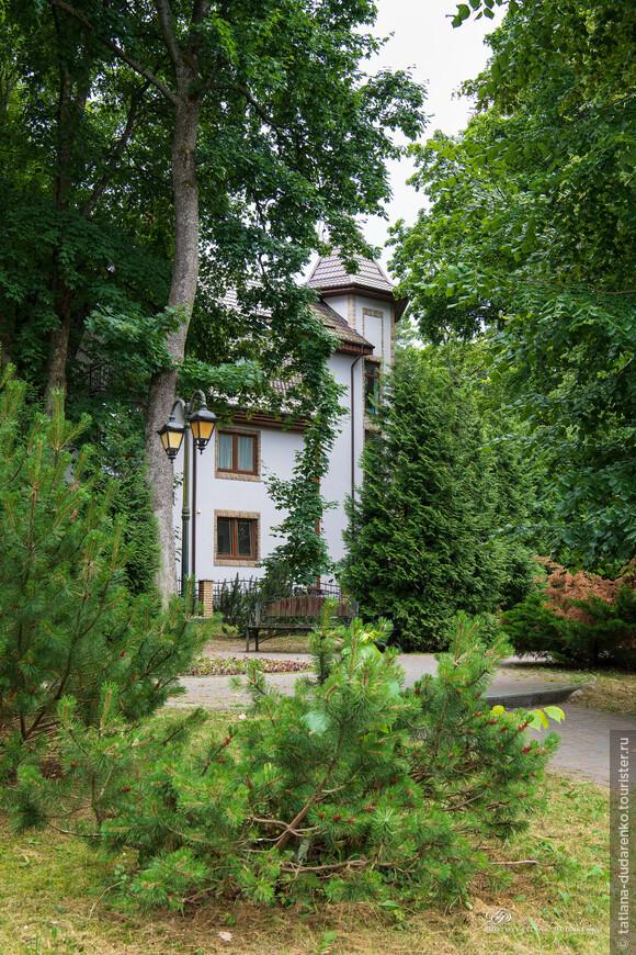 Светлогорск расположен в лесопарке. С 1820 года он строился так, что каждое здание города вкраплено в лес, то есть отделено от соседних строений участками леса. С начала 2000-х годов стало появляться всё больше участков сплошной застройки, но тем не менее город очень зеленый и воздух наполнен сосновым запахом.
