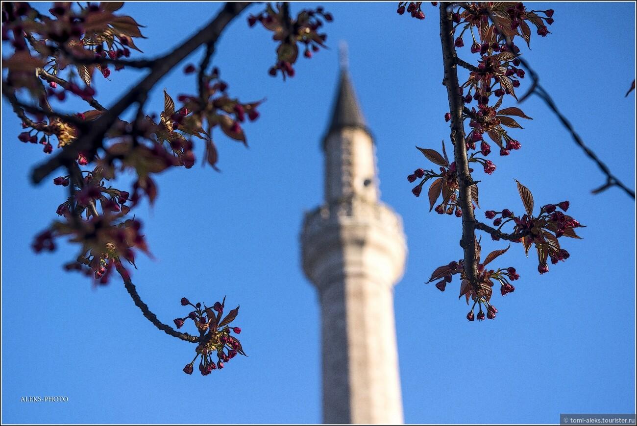 Город, кроме всего прочего, именуют самой мусульманской столицей Европы. Здесь много мечетей и минаретов, придающих городу свой особый колорит - сродни Стамбулу., Второе очарование Сараево