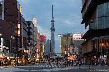 Жители Японии недовольны поведением туристов