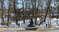 Памятник «Грибы с глазами» в Рязани