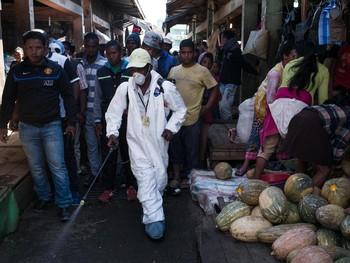 Туристов предупреждают о вспышке чумы на Мадагаскаре
