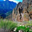 Национальный парк Кальдера де Табурьенте