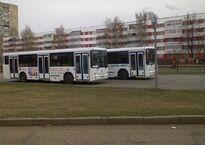 960px-Автобусы_НефАЗ_в_Набережных_Челнах.jpg