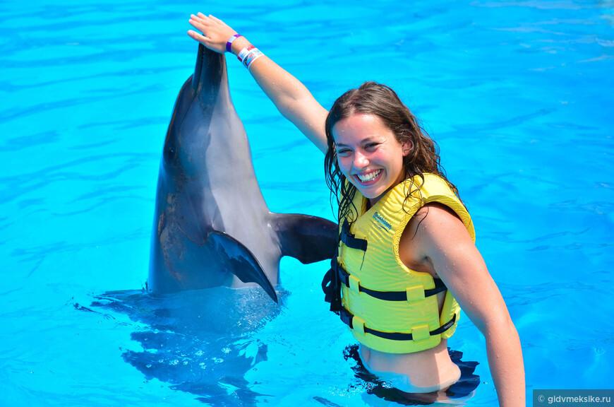 programa-de-interaccion-con-delfines-en-dolphinaris.jpg