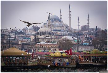 Стамбул, Варну и Сочи свяжут круизами