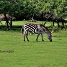 Национальный парк Кайо Саэтия