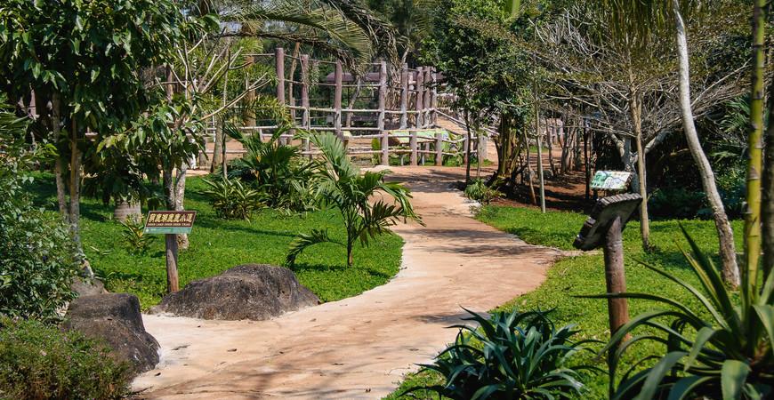 Ботанический сад Дуншань