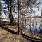 Национальный парк «Припышминские боры»