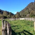 Национальный парк Уангануи