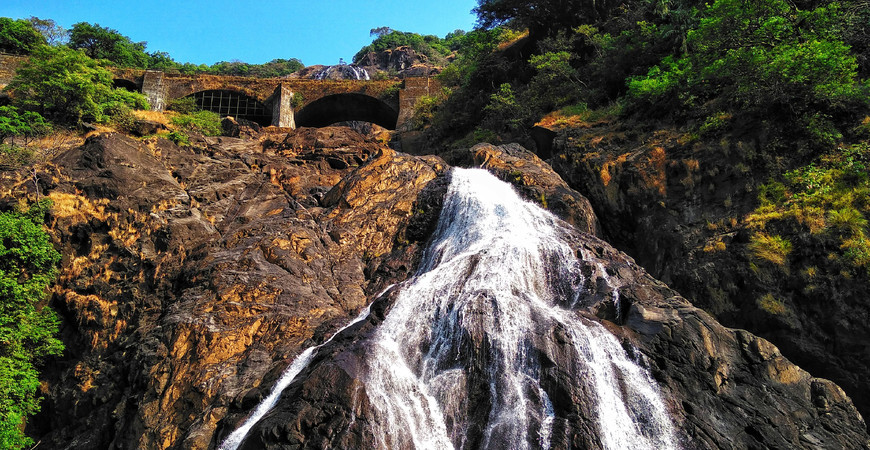 Национальный парк Бхагван Махавир (Моллем)
