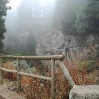 каменная роза долины Ла Оратава