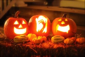 В Ботаническом саду Праги отпразднуют Хэллоуин