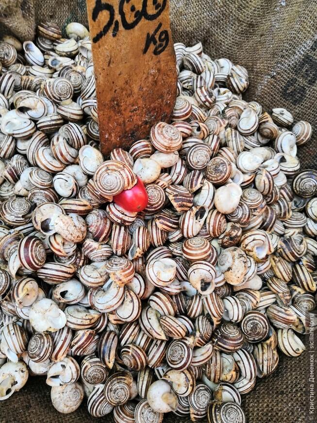 Катания- город из лавы. Соборная площадь. Рыбный рынок.