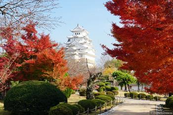 В Киото ввели туристический налог