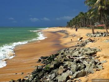 На Шри-Ланке подвыпившие туристы-молодожёны случайно взяли в аренду отель