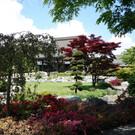 Японский сад в Дюссельдорфе