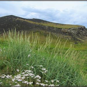 Исландия, день 5-й: вулкан, мошки и водопад.