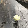 Мемориал 9/11. Пешеходная экскурсия по Нью-Йорку.